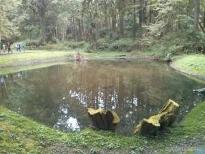 Alishan - younger sister pond