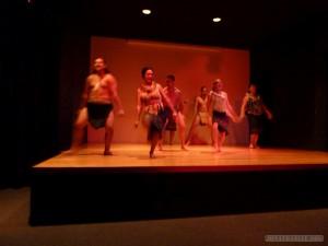 Auckland - Auckland museum Maori culture