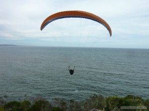 Australia random encounters - paragliding in air