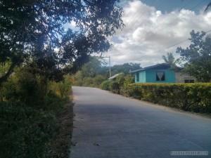 Bohol - panglao road 1