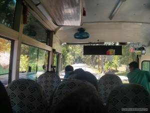 Bus to Moalboal