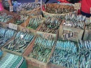 Cebu - Carbon market fish