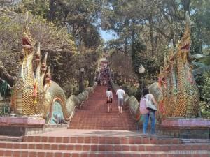 Chiang Mai - Wat Doi Suthep stairs