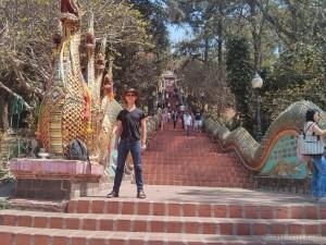 Chiang Mai - Wat Doi Suthep stairs portrait