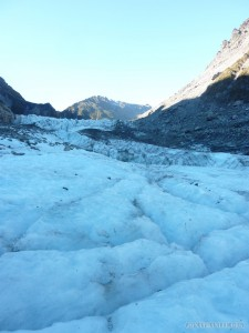 Fox Glacier - scenery 1