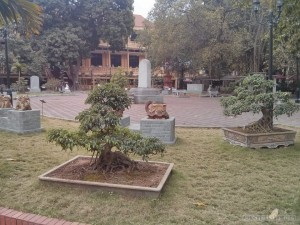 Hanoi - history museum garden 1