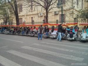 pedicab line 1