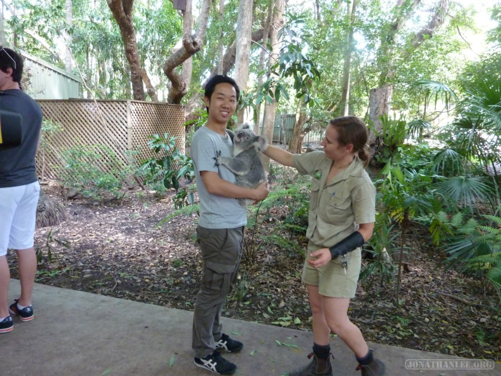 Lona Pine Sanctuary - hugging a koala