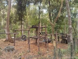 Luang Prabang - Kuang Si bear rescue 2