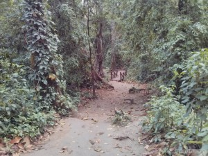 Luang Prabang - Kuang Si trail 1