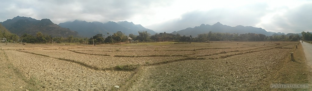 Mai Chau - panorama rice fields 6