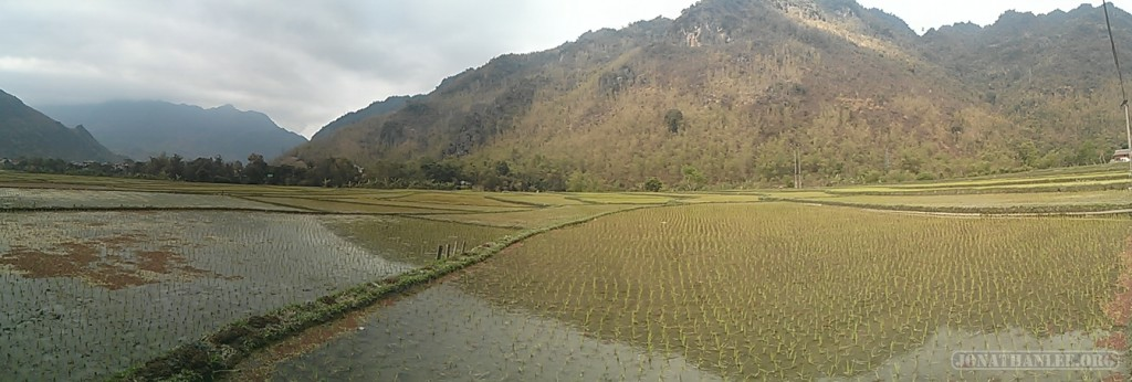 Mai Chau - panorama rice fields 7