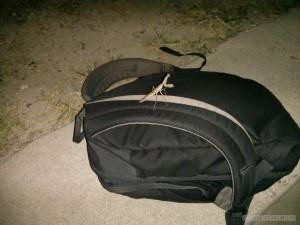 Moalboal - praying mantis on bag