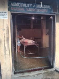 Moalboal - slaughterhouse