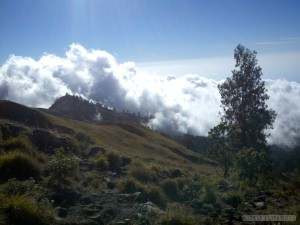 Mount Rinjani - first day scenery 5