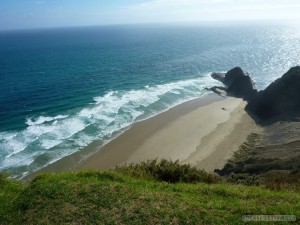 NZ North Island - Cape Reinga beach