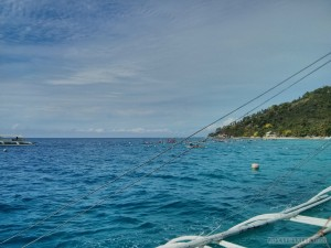 Oslob - swimming with whale sharks 1