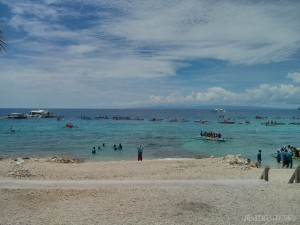 Oslob - swimming with whale sharks 2