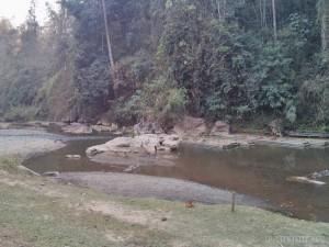 Pang Mapha - Lod Cave bamboo rafts 1