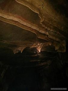Pang Mapha - caving trip fossil cave bat