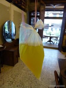 Penang - crysanthemum tea in a bag