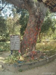 Phnom Penh - Choeung Ek killing tree