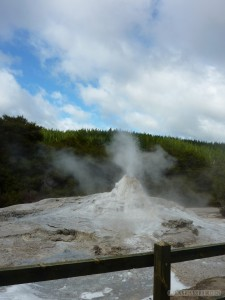 Rotorua - Wai o Tapu Lady Knox 3