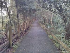 Sun Moon Lake - Yetan bikeway 1