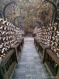 Sun Moon Lake - steps of the year trail down